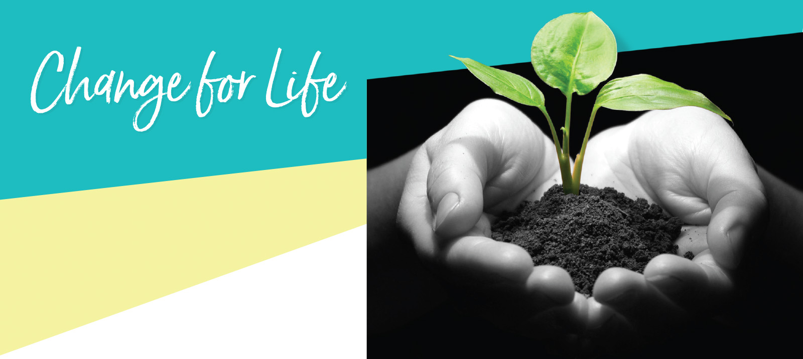 Change for life banner